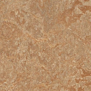 Фото -             Натуральный Линолеум Forbo Marmoleum Real            (02000011)