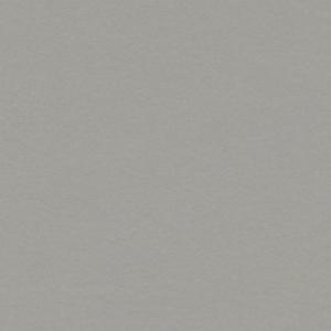 Фото -             Натуральный линолеум Forbo Marmoleum Walton            (0200013)