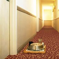Ковролин для гостиниц BIG Carus