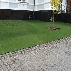 Ландшафтная трава Prince