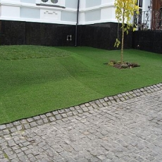 Ландшафтна трава Prince