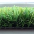 Фото - Ландшафтная трава Dream (0000003)