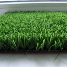 Ландшафтна трава Royal