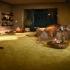 Фото - Ковролин для дома AW Obsession (0800099)